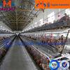 3 rows 3 tier 10000 chickens farm bird cage for chicken/ chicken breeding cage/ bird breeding cage