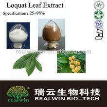 Natural 25%~98% Ursolic acid Loquat Leaf Extract