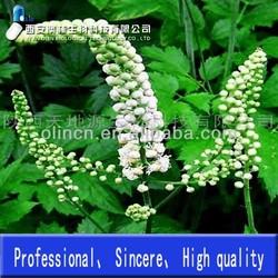 hight quality triterpene glycosides 2.5% by UV