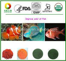 Natural extrato de calêndula, xantofila, xantinas, luteína, melhorador de cores