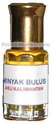 Turtle Oil / Minyak bulus