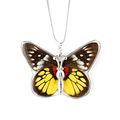 singular hermosa joyería de resina alas de mariposa real