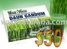 Wheat Grass Beverage