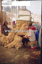 Arouss Flax Fiber (70% Cottonized/Ton)