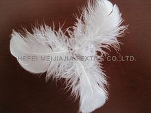 bulk feathers