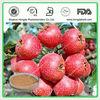 Pure Natural Extractum Fructus Crataegi Hypoqlauci/Hawthorn Fruit / Leaf Extract