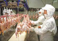 pollo halal matadero