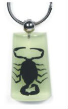 Unique REAL insect latest gift items