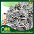 Benefícios de sementes de girassol