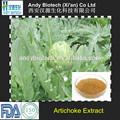 100% bonne qualité feuille d'artichaut extrait cynarine