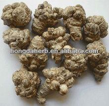 Natural panax notoginseng root powder