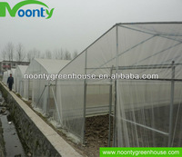 Poly Agricultural Hothouses