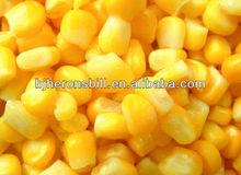 Sweet Corn flavor superior flavorings
