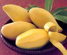 Sweet Sweet Mangoes