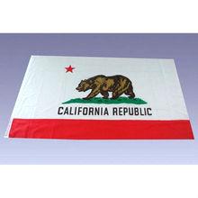 custom polyester printed flag for promotion gift