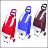 2012 cute school trolley bag,Two-wheels shopping bags.