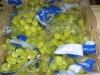 High Quality Fresh Seedless Green Grapes