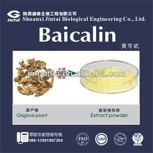 pure natural 85% HPLC radix scutellariae extract