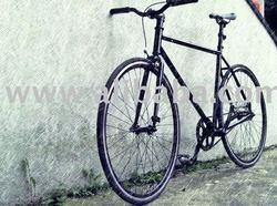 Track bike - Fixed gear - single speed bike