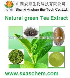 instant green tea extract