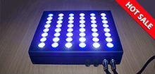intelligent 48x3W LED aquarium light Bridgelux/CREE with dimmers