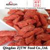 280grains Ningxia Fresh & Dried Golden Goji Berry