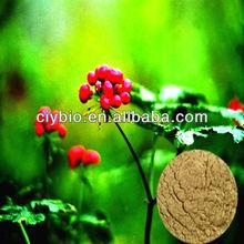 100% natural Radix Notoginseng extract Powder
