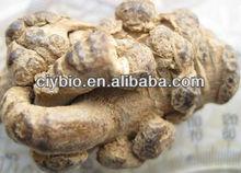 Top Quality 100% natural Radix Notoginseng extract Powder