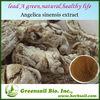 2014 Angelica Root extract/ herb medicine