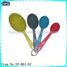 Household Measuring Spoon