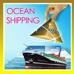 ningbo china best logistics service to Casablanca Africa---Esther