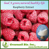 2013 Organic Freeze Dried Raspberry powder