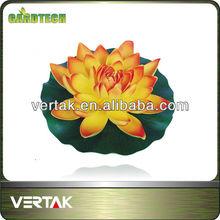 Eva lotus
