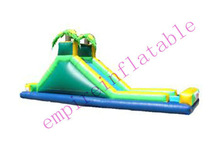 water slide,inflatables,commercial inflatable slide WS028