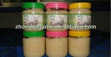 fresh garlic paste price