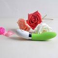 2013 best seller sesso vibratore dream lover dl 01 serie negozi di giocattoli online