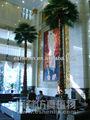 Artificial palmeira, imitação da árvore de coco, tipos de palmeiras