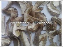 Сушеные ломтики класс белые грибы боровик маракуйя