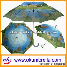 Hot sale fashion eva umbrella pro environment umbrella