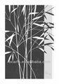 estilo chino de la impresión de bambú moderna pintura al óleo