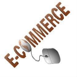 Ecommerce Website Development & Affordable SEO Services