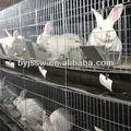 rete metallica gabbia per conigli produttori