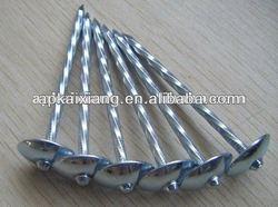 2.5inch galvanized umbrella head roofing nails exported to Nigeria