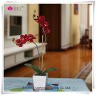Handmade Plastic Flower Manufacture Table Decoration Flower Arrangements