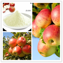 100% Natural Pure Fresh Apple Juice Powder