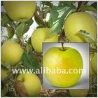 Hungarian,Poland delicious apple