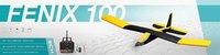 RC Airplane Fenix 100