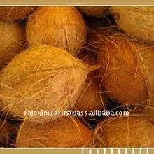 Semi Husked Matured Coconut supplier