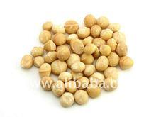 Macadamia Nut Kernels