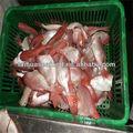 melhor cozimento e congelados de peixe japonês nomes